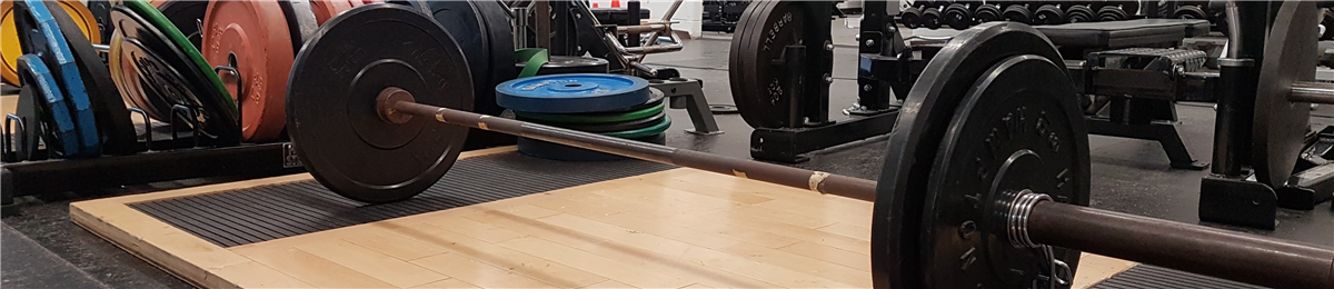 An image of some of the equipment in the weight room.